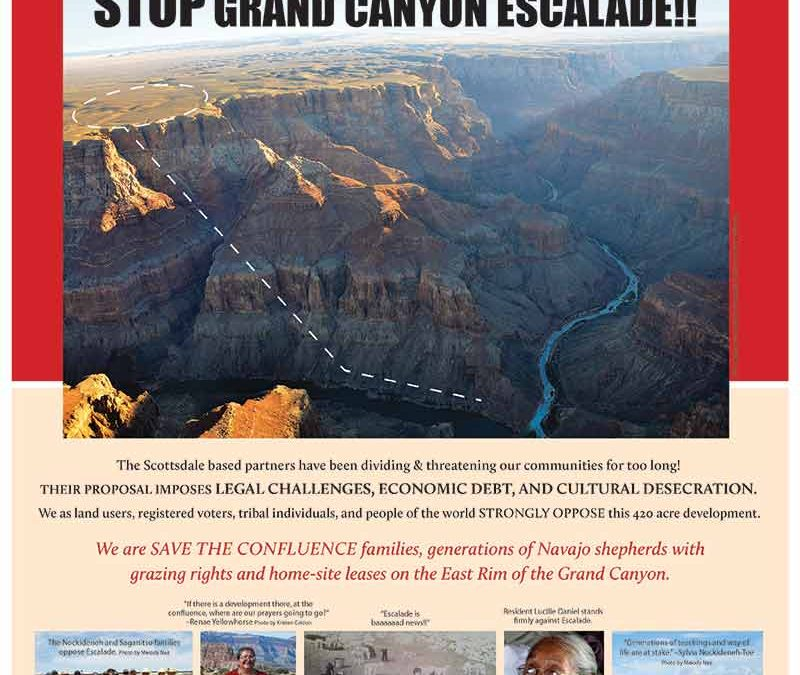 Save the Confluence releases fact sheet, flyer